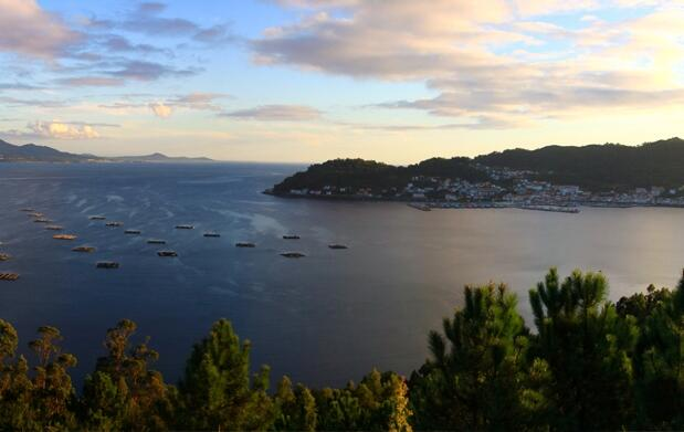 Galicia: 7 días Rias Baixas