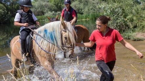 Curso de equitación y vida para este verano